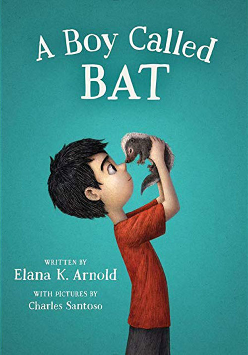 """Figure 33: Picture of the book """"A boy called Bat"""""""