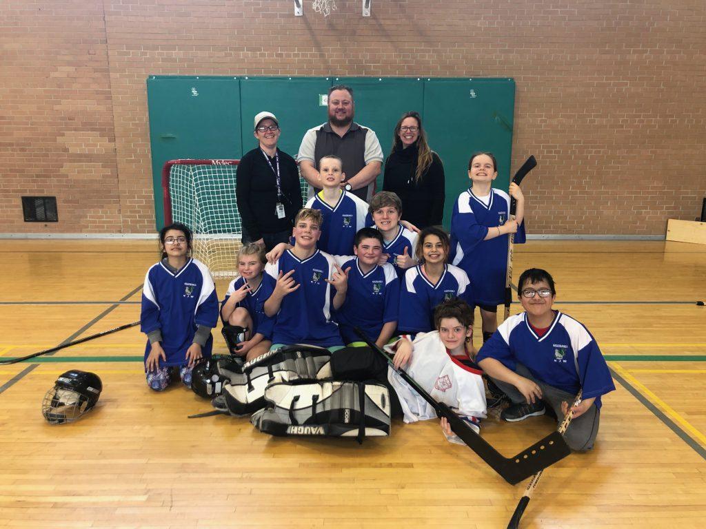 Provincial ball hockey team