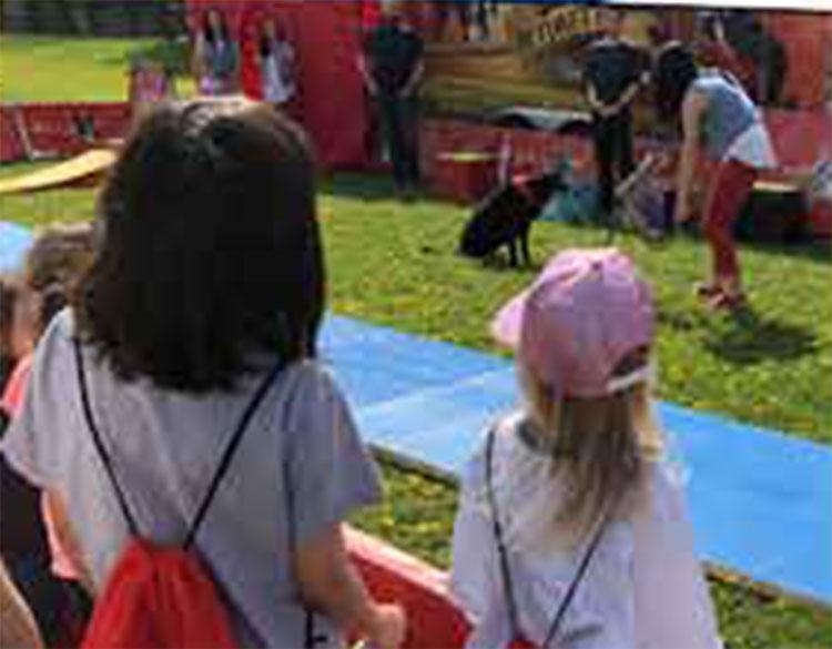 Élèves regardant un événement dans le cadre du Festival pour les enfants sourds